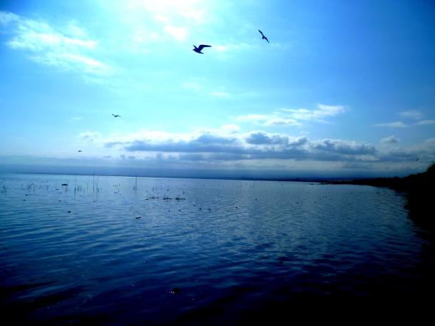 The stunning lake